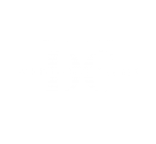 DCweddingfilms